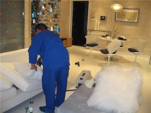 沙发清洗保养